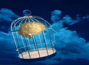 Teoria di Stern (Psicoterapia Funzionale)