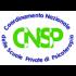 Immagine1-CNSP-3