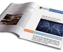Psicoterapia e Neuroni Specchio: articolo a cura di Luciano Rispoli-psicologo