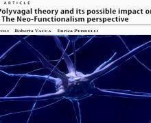 Psicologia e Neuroscienze – Psicoterapia Funzionale versus Teoria Polivagale